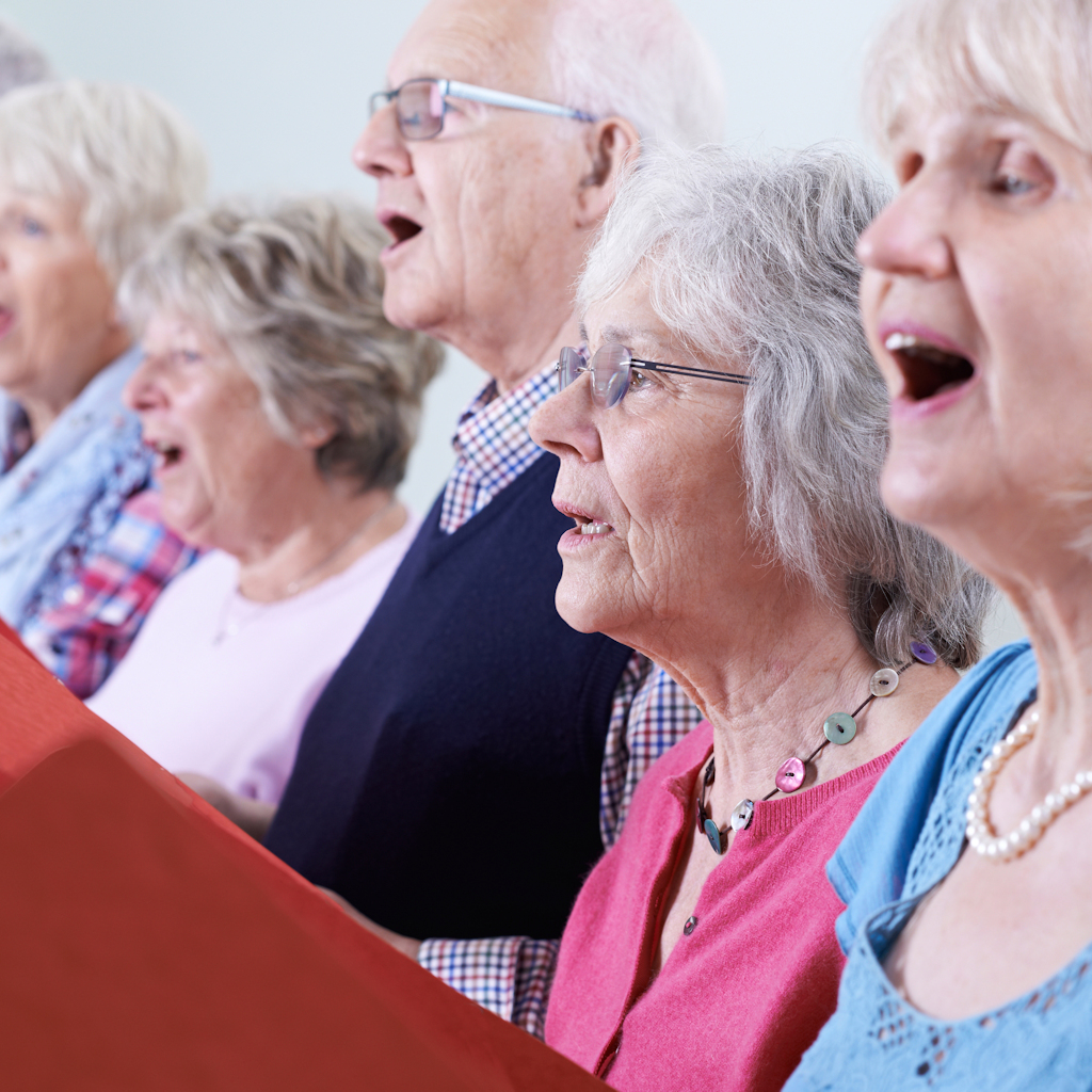 Stock Image of an adult choir